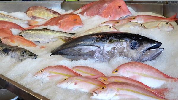Для рыбной продукции разработают новые ГОСТы